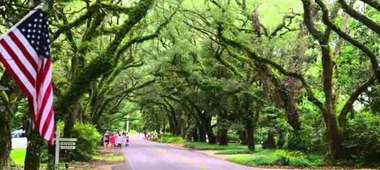 Magnolia Springs limos