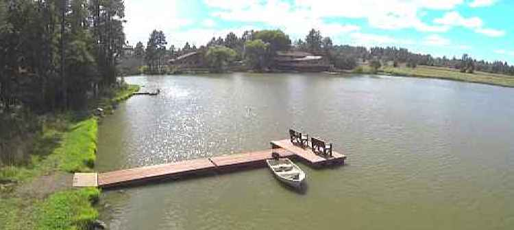 Lake of the Woods limos