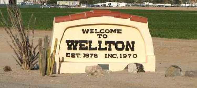 Wellton limos