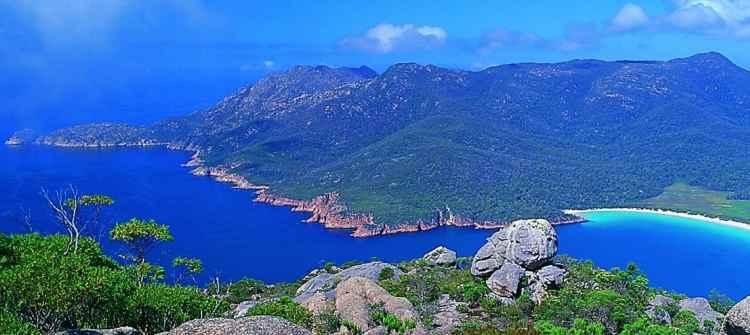 Tasmania limos