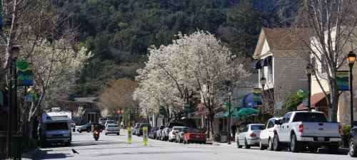 limo service in Saratoga, CA