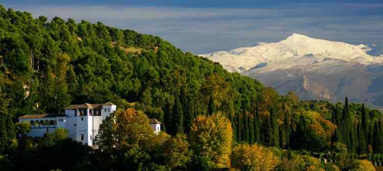 Granada limos
