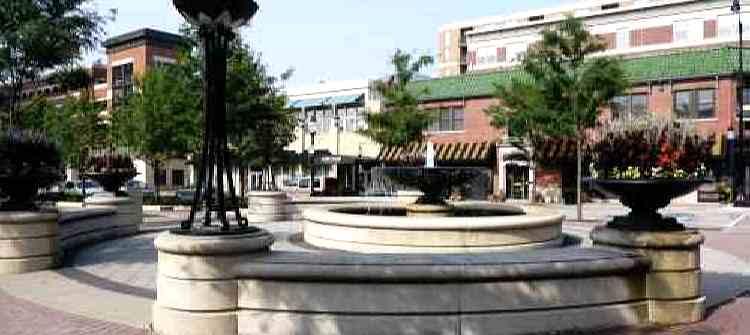 Arlington Heights limos